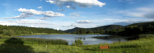 Collins Lake Ranch, peaceful green valley and lake for canoeing and bird watching!